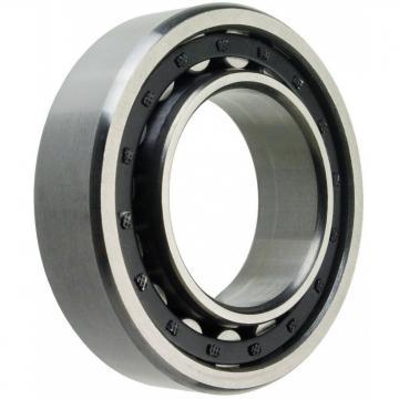30 mm x 90 mm x 23 mm  ISO NU406 roulements à rouleaux cylindriques