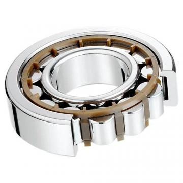 30 mm x 55 mm x 13 mm  NKE NU1006-E-MPA roulements à rouleaux cylindriques