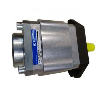 Parker PV2R2-41 PV2 Pompe
